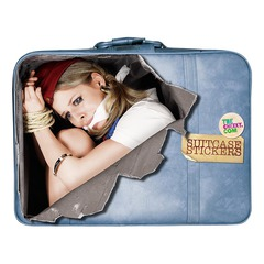 Suitcase stickers 4